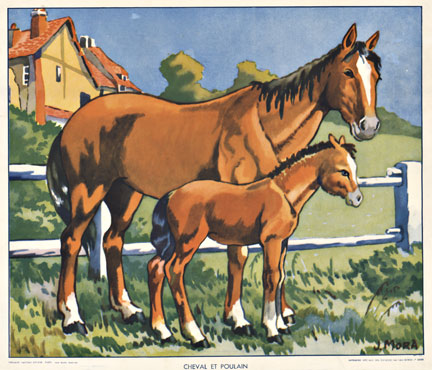 Signed - Chevel et Poulain (Horse & Pony) border=