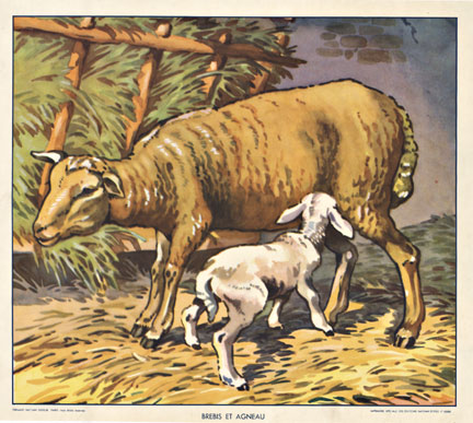 Brebis et Agneu (Sheep & Lamb), Signed