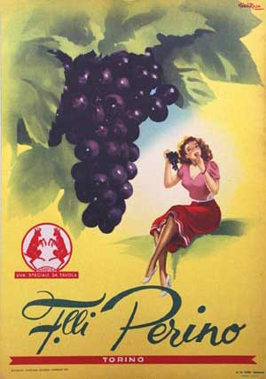 Gian Rosa - Perino Torino Grapes border=