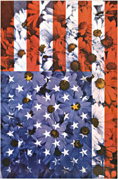 Title: American Flag with Daisy , Date: 1967 , Size: 24 x 36/5